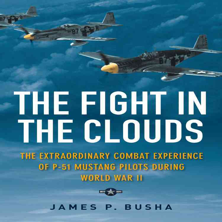 Fight in the Clouds By Busha, James P.
